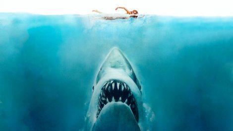 Tiburon Steven Spielberg cartel