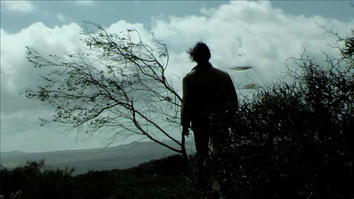 Documental Los Sueños al viento David Delgado San Ginés